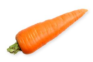 Zanahoria En Agrodak From Mexico Ppfam Com Sin coste para uso comercial sin necesidad de mencionar la fuente libre de derechos de autor. zanahoria en agrodak from mexico